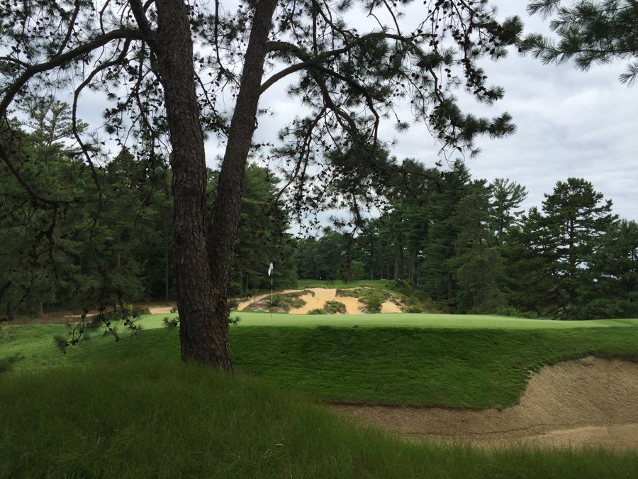 Pine Valley GC- Hole 10- rear view